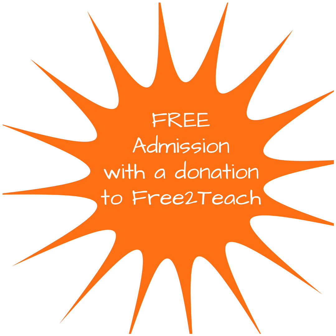 Donate to Free2Teach (6)
